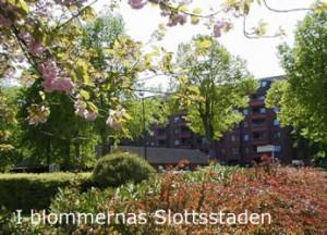 Bornholm5_3